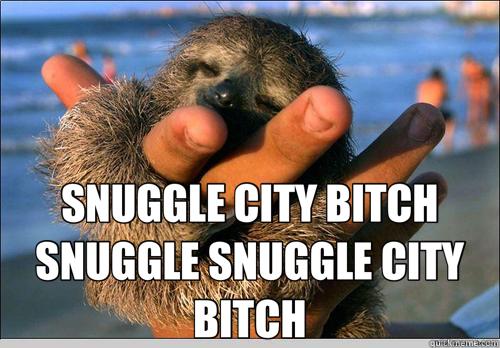 SNUGGLE CITY BITCH SNUGGLE SNUGGLE CITY BITCH  cute baby sloth