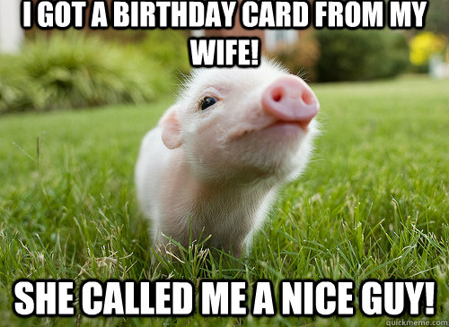 I got a Birthday Card from my wife! She called me a NICE GUY!