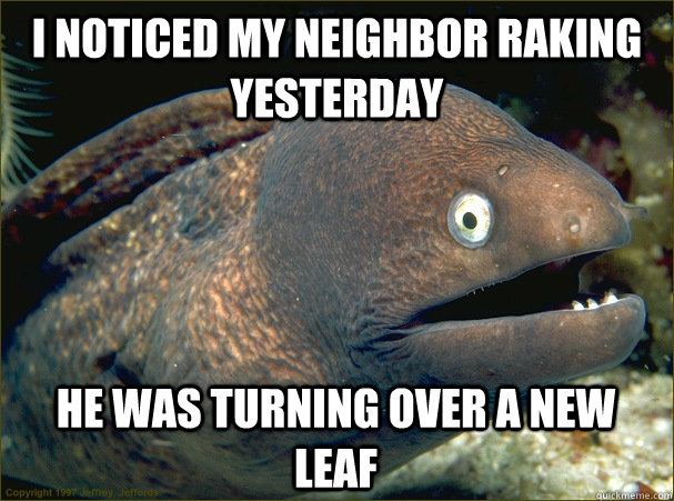 I noticed my neighbor raking yesterday He was turning over a new leaf - I noticed my neighbor raking yesterday He was turning over a new leaf  Bad Joke Eel