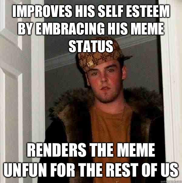 95b41d9797360a6a0f6d0264e4bc61029bd16fc9aa460bc99e43c22326fe46b0 improves his self esteem by embracing his meme status renders the