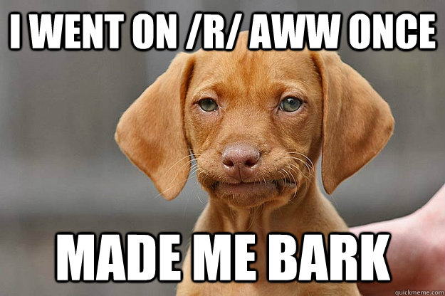 I went on /r/ aww once Made me bark