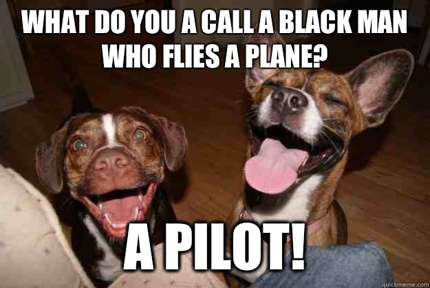 What do you a call a black man who flies a plane?  A pilot! - What do you a call a black man who flies a plane?  A pilot!  Clean Joke Puppies