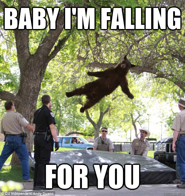 Baby I'm falling For you  falling bear