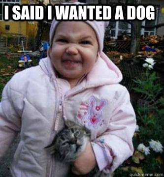 I said i wanted a dog
