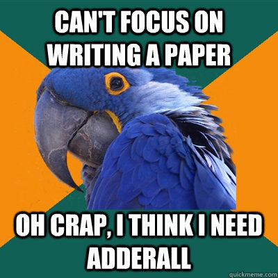 Can't focus on writing a paper Oh crap, I think I need adderall - Can't focus on writing a paper Oh crap, I think I need adderall  Paranoid Parrot