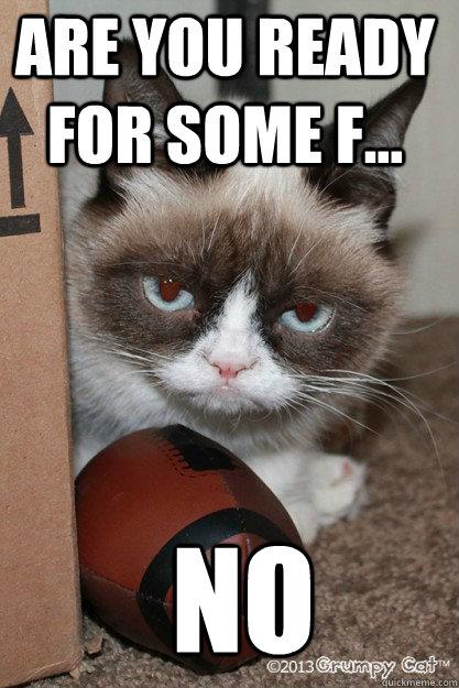 Kinder Garden: Grumpy Cat Football Memes