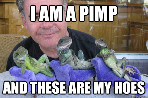 Funny pimps and hoes