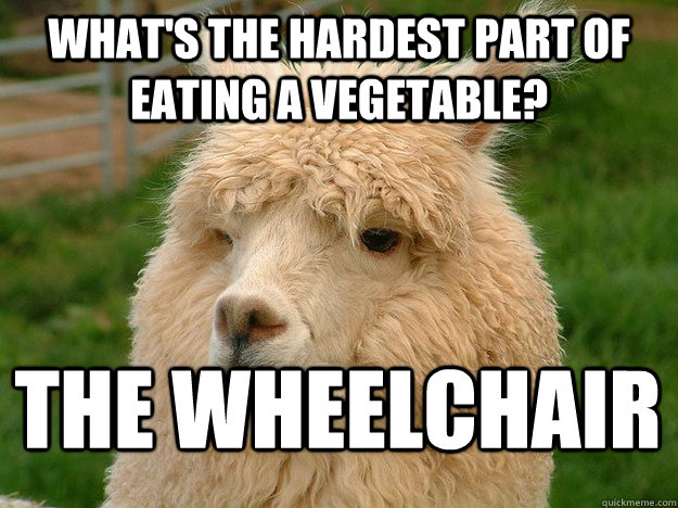 what's the hardest part of eating a vegetable? The wheelchair  Tasteless Alpaca