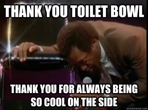 Thank you toilet bowl Thank you for always being so cool on the side - Thank you toilet bowl Thank you for always being so cool on the side  Misc