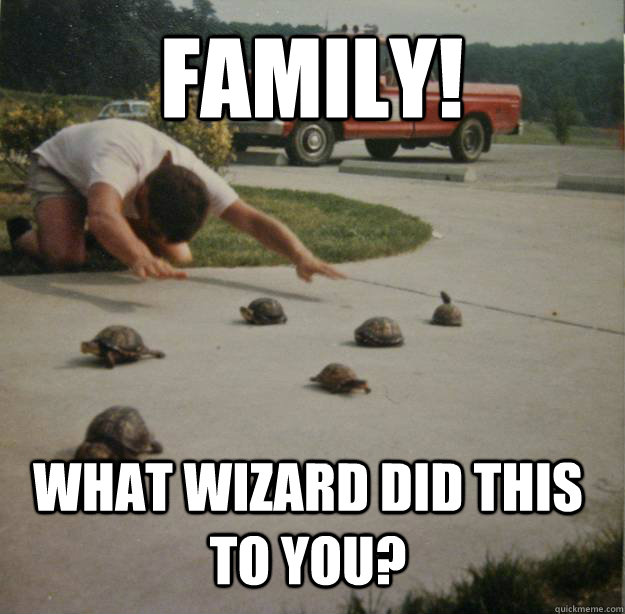 FAMILY! WHAT WIZARD DID THIS TO YOU?