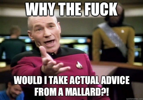 Why the fuck Would I take actual advice from a mallard?! - Why the fuck Would I take actual advice from a mallard?!  Why The Fuck Picard