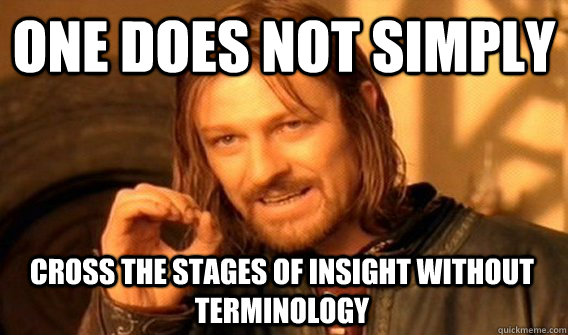 ONE DOES NOT SIMPLY CROSS THE STAGES OF INSIGHT WITHOUT TERMINOLOGY - ONE DOES NOT SIMPLY CROSS THE STAGES OF INSIGHT WITHOUT TERMINOLOGY  One Does Not Simply