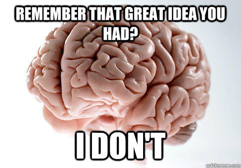 Remember that great idea you had? I don't - Remember that great idea you had? I don't  Scumbag Brain