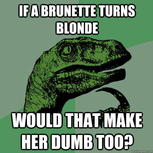 If a brunette turns blonde  would that make her dumb too? - If a brunette turns blonde  would that make her dumb too?  Philosoraptor