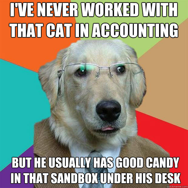 I've never worked with that cat in accounting  but he usually has good candy in that sandbox under his desk - I've never worked with that cat in accounting  but he usually has good candy in that sandbox under his desk  Business Dog
