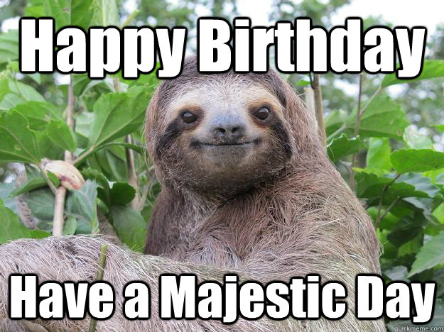 Happy Birthday Have a Majestic Day - Happy Birthday Have a Majestic Day  Stoned Sloth