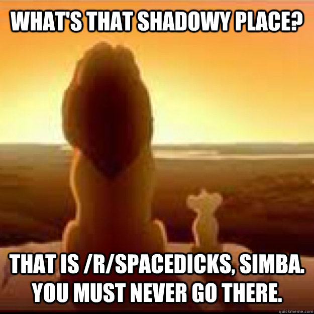 What's that shadowy place? that is /r/spacedicks, simba. You must never go there.