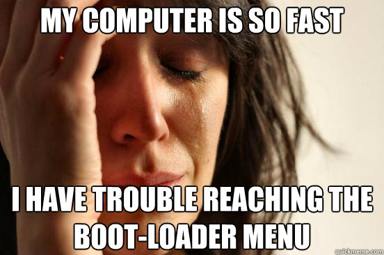 My computer is so fast i have trouble reaching the boot-loader menu - My computer is so fast i have trouble reaching the boot-loader menu  First World Problems