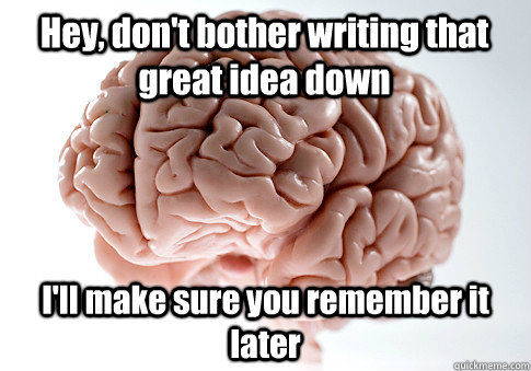 Hey, don't bother writing that great idea down I'll make sure you remember it later - Hey, don't bother writing that great idea down I'll make sure you remember it later  Scumbag Brain