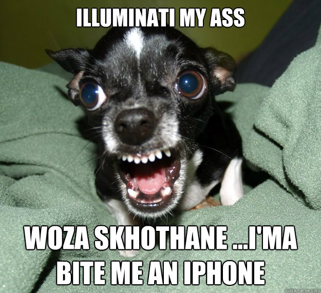 ILLUMINATI MY ASS WOZA SKHOTHANE ...i'MA BITE ME AN IPHONE - ILLUMINATI MY ASS WOZA SKHOTHANE ...i'MA BITE ME AN IPHONE  Chihuahua Logic