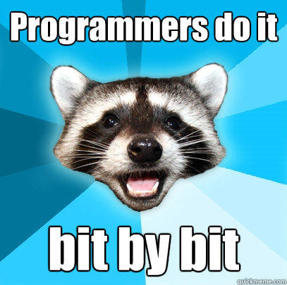 Programmers do it bit by bit - Programmers do it bit by bit  Lame Pun Coon