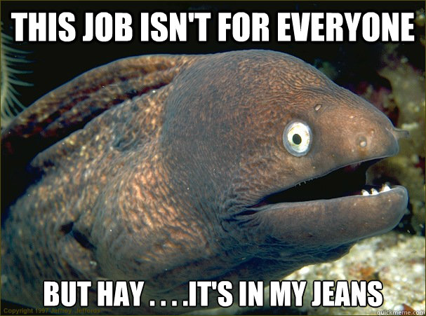 this job isn't for everyone but hay . . . .it's in my jeans - this job isn't for everyone but hay . . . .it's in my jeans  Bad Joke Eel