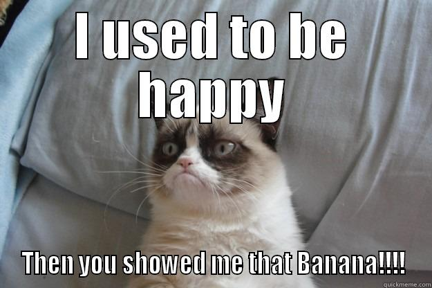 I USED TO BE HAPPY THEN YOU SHOWED ME THAT BANANA!!!! Grumpy Cat
