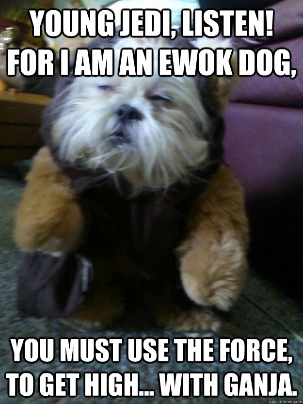 Young jedi, listen! For I am an ewok dog, You must use the force, to get high... with ganja. - Young jedi, listen! For I am an ewok dog, You must use the force, to get high... with ganja.  mah dawg knows sup