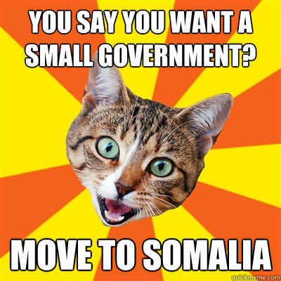 You say you want a small government? Move to Somalia  Bad Advice Cat