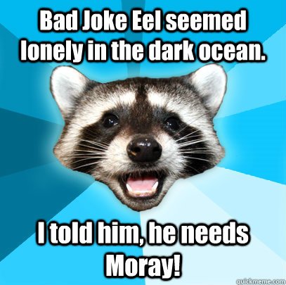 Bad Joke Eel seemed lonely in the dark ocean. I told him, he needs Moray! - Bad Joke Eel seemed lonely in the dark ocean. I told him, he needs Moray!  Lame Pun Coon