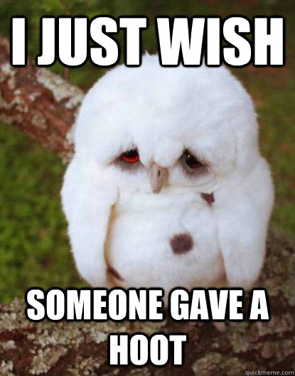 I just wish Someone gave a hoot