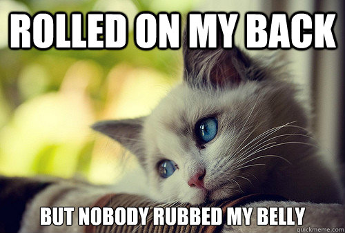 Rolled on my back But Nobody rubbed my belly - Rolled on my back But Nobody rubbed my belly  First World Cat Problems