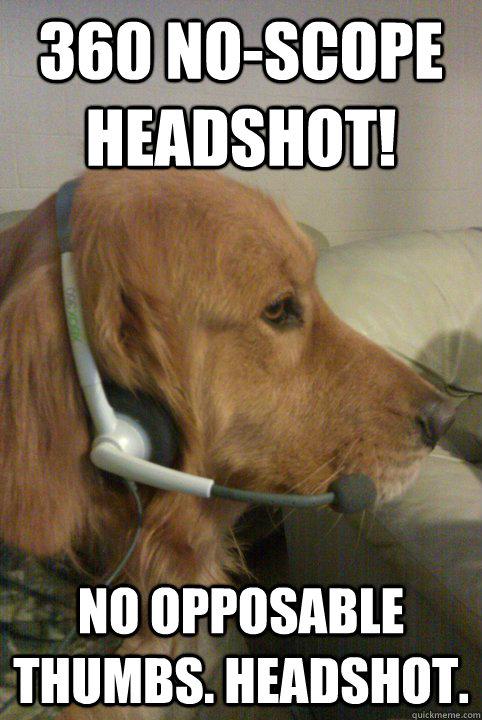 360 NO-SCOPE HEADSHOT! NO OPPOSABLE THUMBS. HEADSHOT. - 360 NO-SCOPE HEADSHOT! NO OPPOSABLE THUMBS. HEADSHOT.  Xbox Live Dog
