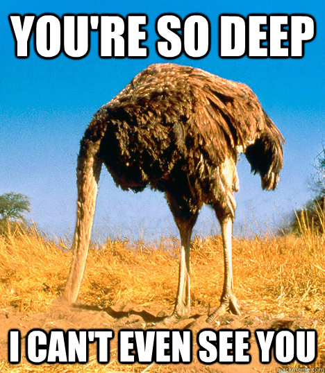 YOU'RE SO DEEP I CAN'T EVEN SEE YOU - YOU'RE SO DEEP I CAN'T EVEN SEE YOU  Reflecting Ostrich