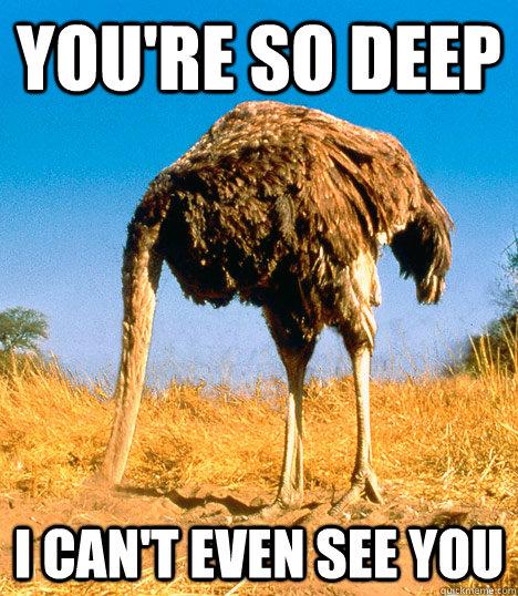 Reflecting Ostrich memes | quickmeme
