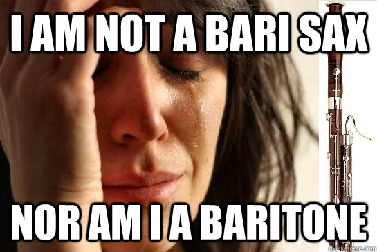 I am not a bari sax nor am I a baritone  First Chair Problems bassoon