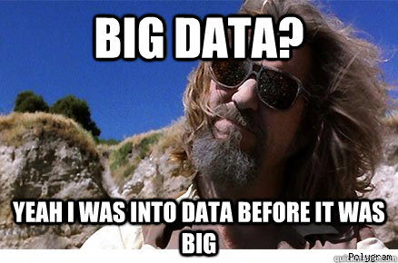 "There is no Such Thing as Biomedical ""Big Data"""