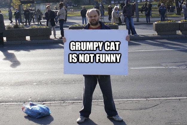 Grumpy Cat is not funny - Grumpy Cat is not funny  Grumpy Serb