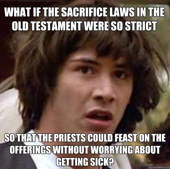 Funny Meme Pics Without Captions : What if the sacrifice laws in old testament were so