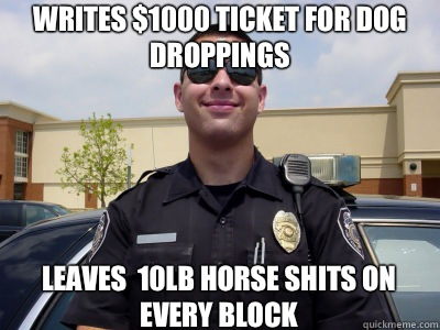 Writes $1000 ticket for dog droppings Leaves  10lb horse shits on every block