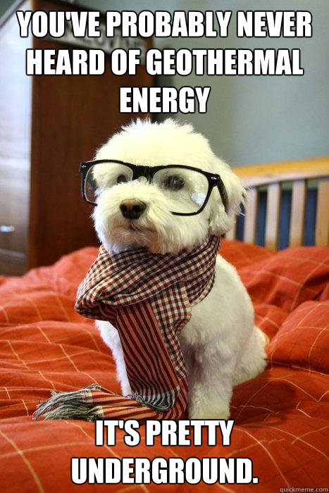 You've probably never heard of geothermal energy It's pretty underground.  Hipster Dog