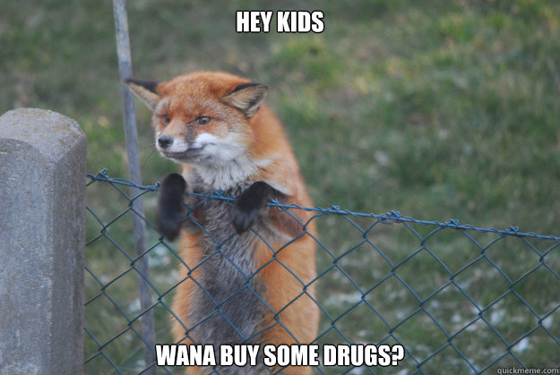 Hey Kids wana buy some drugs?  sketchy fox
