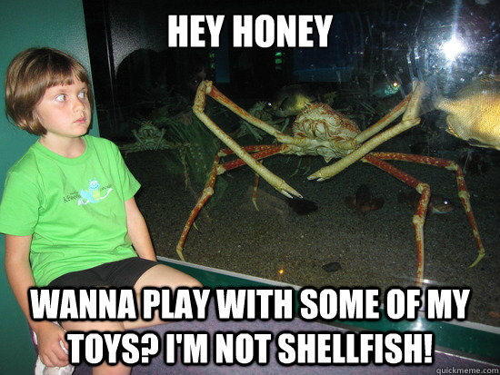 hey Honey Wanna play with some of my toys? I'm not Shellfish!