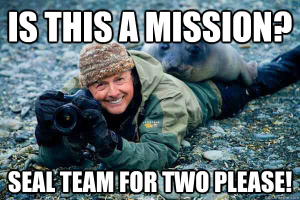 Is This a Mission? Seal Team for Two Please!