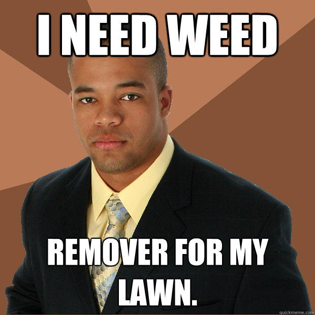 i need weed remover for my lawn. - i need weed remover for my lawn.  Successful Black Man