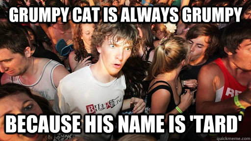 Grumpy cat is always grumpy  because his name is 'Tard' - Grumpy cat is always grumpy  because his name is 'Tard'  Sudden Clarity Clarence
