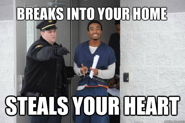breaks into your home steals your heart