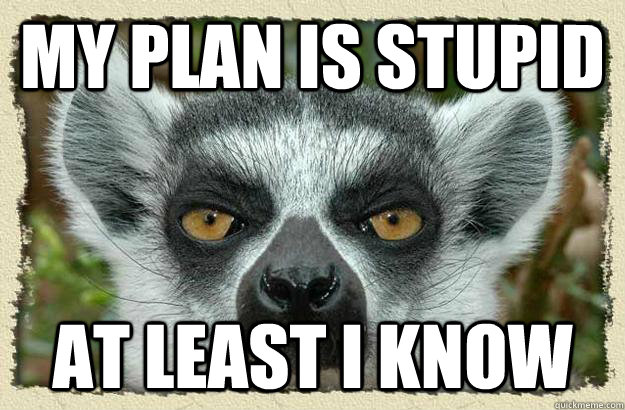 my plan is stupid at least i know