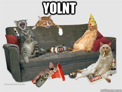 YOLNT  YOLNT