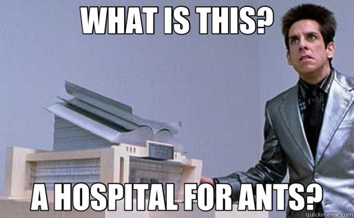 WHAT IS THIS? A HOSPITAL FOR ANTS? - WHAT IS THIS? A HOSPITAL FOR ANTS?  Derek Zoolander Center for Kids Who Dont Read Good